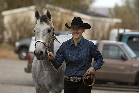 Equine Business Management photo