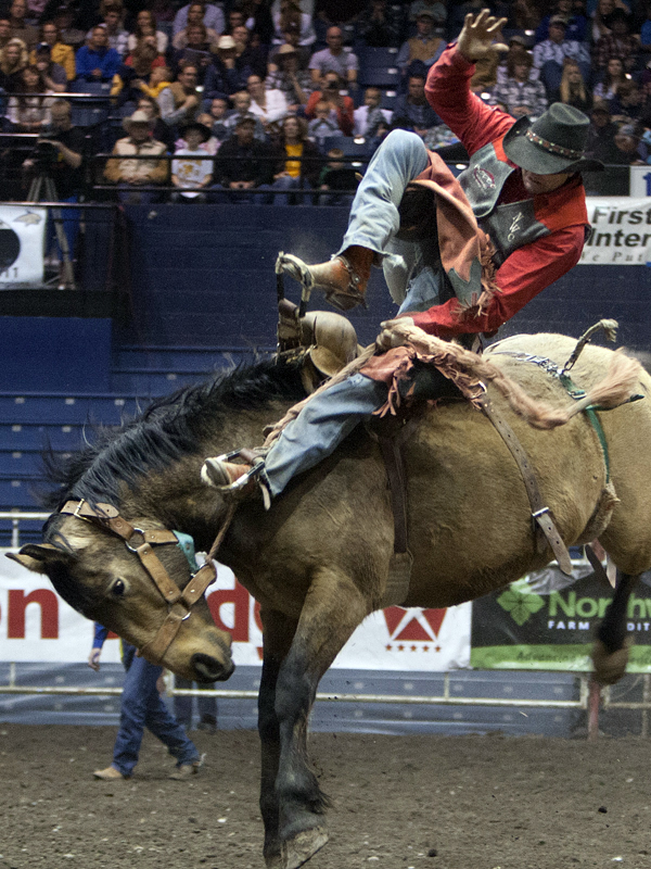 Trapper Rodeo team member riding a bronc